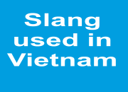 Slang used in Vietnam